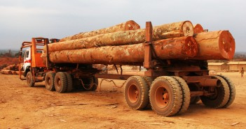 exportation bois, UE