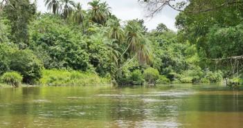 Écotourisme : l'émergence d'un tourisme vert au Congo
