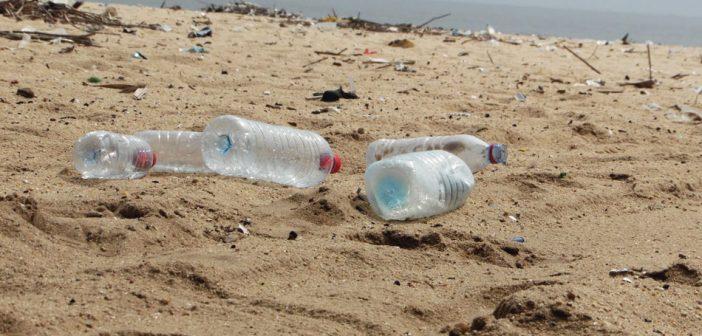 Le danger des bouteilles recyclées